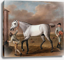 Постер Уоттон Джон The Duke of Hamilton's Grey Racehorse Victorious at Newmarket 1725