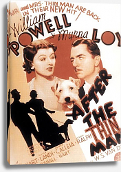 Постер Poster - After The Thin Man