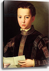 Постер Бронзино Анджело Portrait of Francesco I de' Medici as a Young Boy, 1551