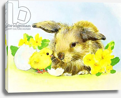 Постер Мэттьюз Диана (совр) Easter bunny with primrose and chick