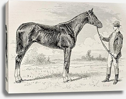 Постер The Earl, winner of the Grad Prix de Paris in 1868. Created by Janet-Lange and Cosson-Smeeton, publi