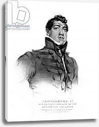 Постер Хейтер Джордж Tamehameha II, His Majesty the King of the Sandwich Islands, 1824