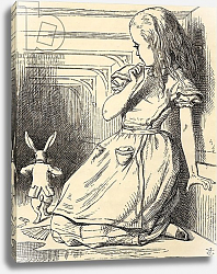 Постер Тениель Джон The White Rabbit is late, from 'Alice's Adventures in Wonderland' by Lewis Carroll, published 1891