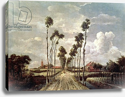 Постер Хоббема Мейндрат (Meindert Hobbema) The Avenue at Middelharnis, 1689