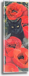 Постер Робинсон Анне (совр) Black Cat with Poppies