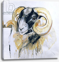 Постер Гиббс Лоу (совр) Long Horn Sheep 2