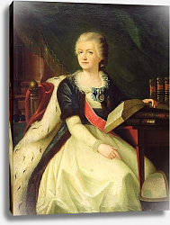 Постер Школа: Русская 18в. Portrait of Princess Yekaterina R. Vorontsova-Dashkova