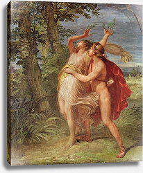 Постер Аппиани Андреа Apollo and Daphne