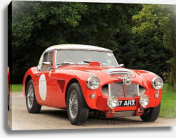Постер Austin Healey 3000 Rally Car (MkII) '1962