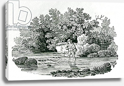 Постер Бевик Томас An Angler in a River Pool, from 'British Birds', 1804