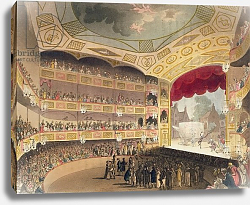 Постер Роуландсон Томас Royal Circus from Ackermann's