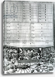 Постер Школа: Голландская 18в. Table II from 'Elenchus Tabularum' by Levinus Vincent, published 1719