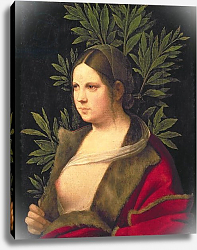 Постер Джорджоне Portrait of a Young Woman, 1506