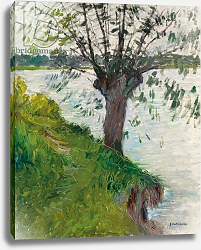 Постер Кайботт Гюстав (Gustave Caillebotte) Willow by the River; Saule au bord de la riviere, c. 1891