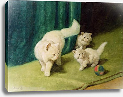 Постер Хейер Артур White Persian Cat with Two Kittens