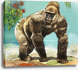 Постер Бэкхаус Д. (совр) Guy the Gorilla, illustration from 'Who's in the Zoo'