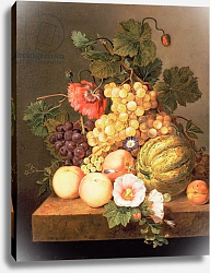 Постер Брюн Иоханнес Still life with fruit