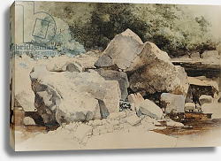Постер Блэклок Уильям Rocks in a Mountain Stream, 1840-58