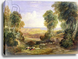 Постер Кокс Давид The Junction of the Severn and the Wye with Chepstow in the Distance, 1830