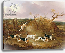 Постер Дэлби Джон Beagles in Full Cry, 1845