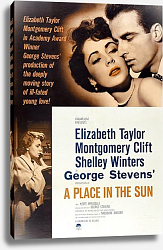 Постер Poster - A Place In The Sun 2