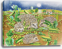 Постер Уоттс Э. (совр) Hedgehogs with Peas beside a Poppy field at night, 1994
