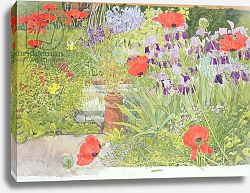 Постер Бентон Линда (совр) Poppies and Irises near the Pond