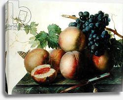 Постер Даель Ян Франс Still Life with Peaches and Grapes on Marble