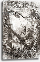 Постер Школа: Испанская 19в. Native Indians capturing a tree sloth on the Oyapock or Oiapoque River, South America