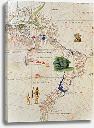 Постер Агнес Батиста (карты) South America, from an Atlas of the World in 33 Maps, Venice, 1st September 1553
