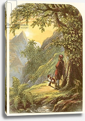 Постер Лидон Александр Robinson Crusoe takes a survey of the island