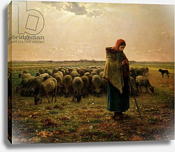 Постер Милле, Жан-Франсуа Shepherdess with her Flock, 1863