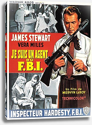 Постер Film Noir Poster - Fbi Story, The