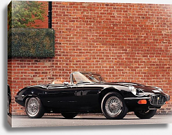 Постер Jaguar E-Type V12 Roadster Commemorative Edition (Series III) '1974–75