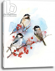 Постер Килинг Джон (совр) Chickadees with Berries, 2017,