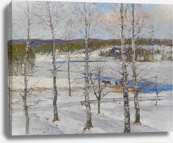 Постер Генберг Антон Winter landscape of Norrland with birch trees