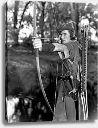 Постер Flynn, Errol (Adventures Of Robin Hood, The) 2