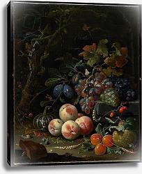 Постер Миньон Абрагам Still Life with Fruit, Foliage and Insects, c.1669