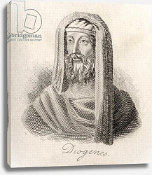 Постер Кук Д. В. Diogenes of Sinope