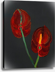 Постер Бартон Дебора (совр) Anthurium, Heart Flower, 2008