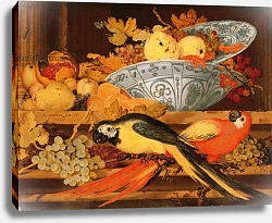 Постер Аст Балтазар Still Life with Fruit and Macaws, 1622