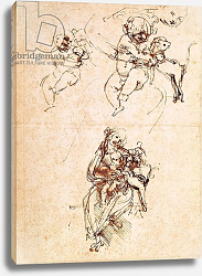 Постер Леонардо да Винчи (Leonardo da Vinci) Studies for a Madonna with a Cat, c.1478-80
