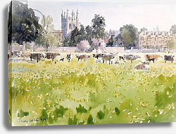 Постер Виллис Люси (совр) Looking Across Christ Church Meadows, 1989