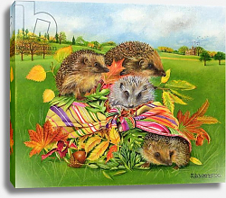 Постер Уоттс Э. (совр) Hedgehogs Inside Scarf, 2000