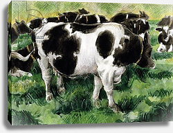 Постер Болл Гарет (совр) Friesian Cows