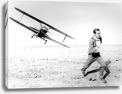 Постер Grant, Cary (North By Northwest)