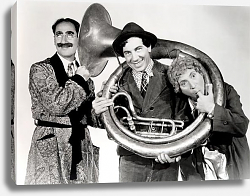 Постер Marx Brothers (A Day At The Races) 2