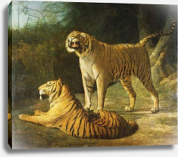 Постер Агассе Жак A Tiger and Tigress at the Exeter 'Change Menagerie in 1808, 1808