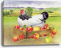 Постер Уоттс Э. (совр) Hen in a Box of Apples, 1990