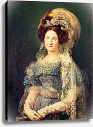 Постер Лопез Висенте Maria Christina de Bourbon-Sicile Queen of Spain, c.1829